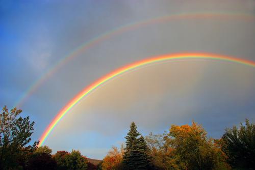 double rainbow over trees