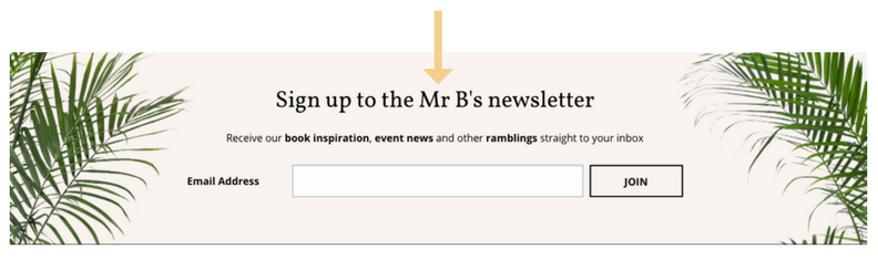 Ed. Mr B newsletter signup box .png