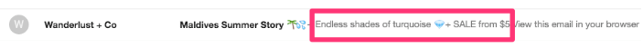 preheader email examples ecommerce
