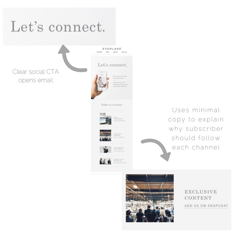 Everlane email marketing_social media promotion