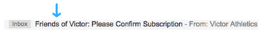 double opt-in subject line example