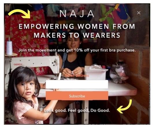 example of website popup design NAJA